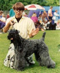 Best in Show Jämsä 1992
